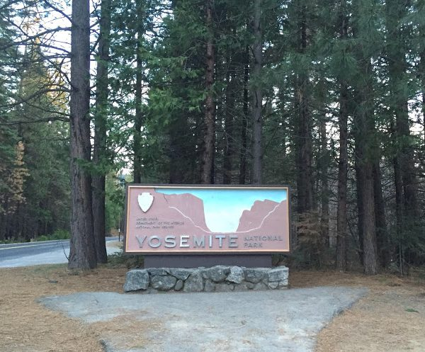 Our First Trip to Yosemite National Park