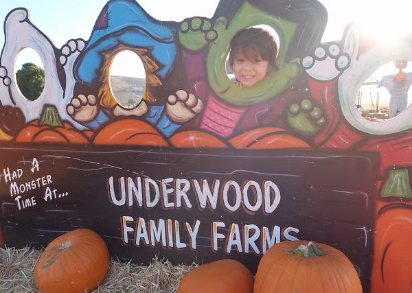 A Visit to the Fall Harvest Festival at Underwood Family Farms