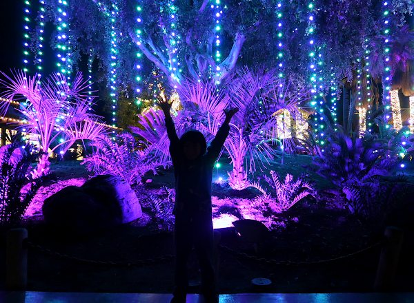 Kick-off the Holidays at the L.A. Zoo Lights 2017