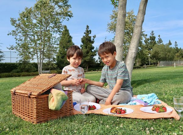 What to Pack for a Family Picnic + Giveaway