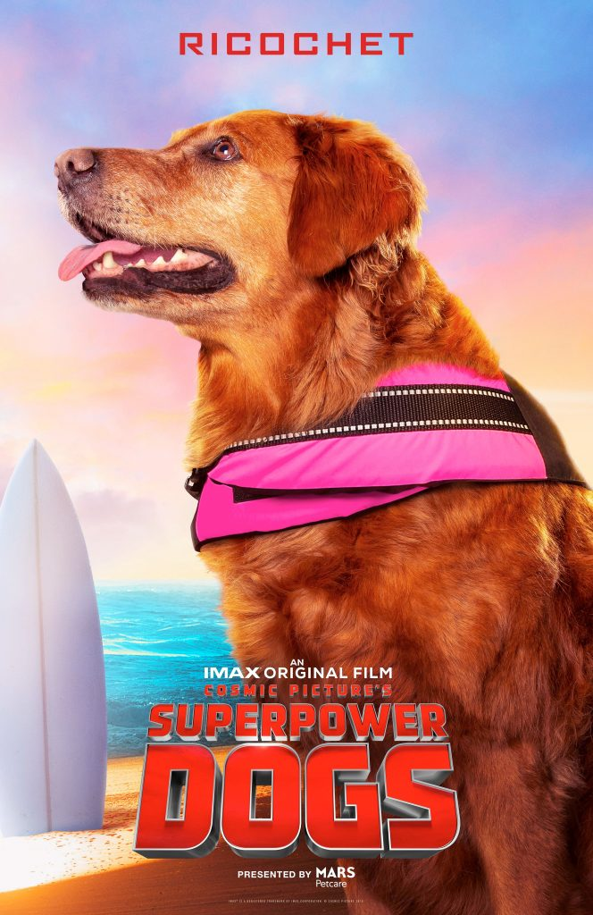 Ricochet from Superpower Dogs