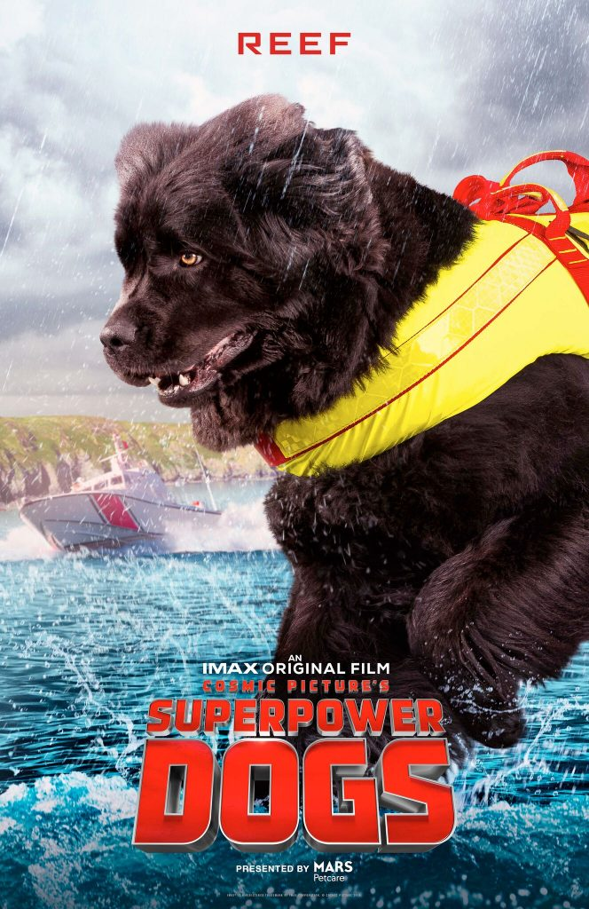 Reef from Superpower Dogs