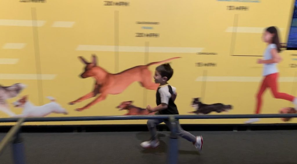 Test your running skills at the California Science Center