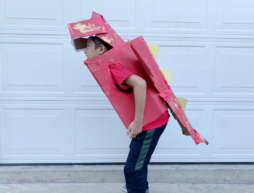 Boxtumes dragon costume