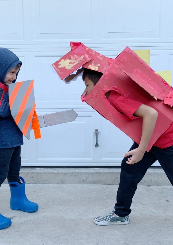 BOXTUMES: Create a Knight & Dragon Costume with Amazon Smile Boxes