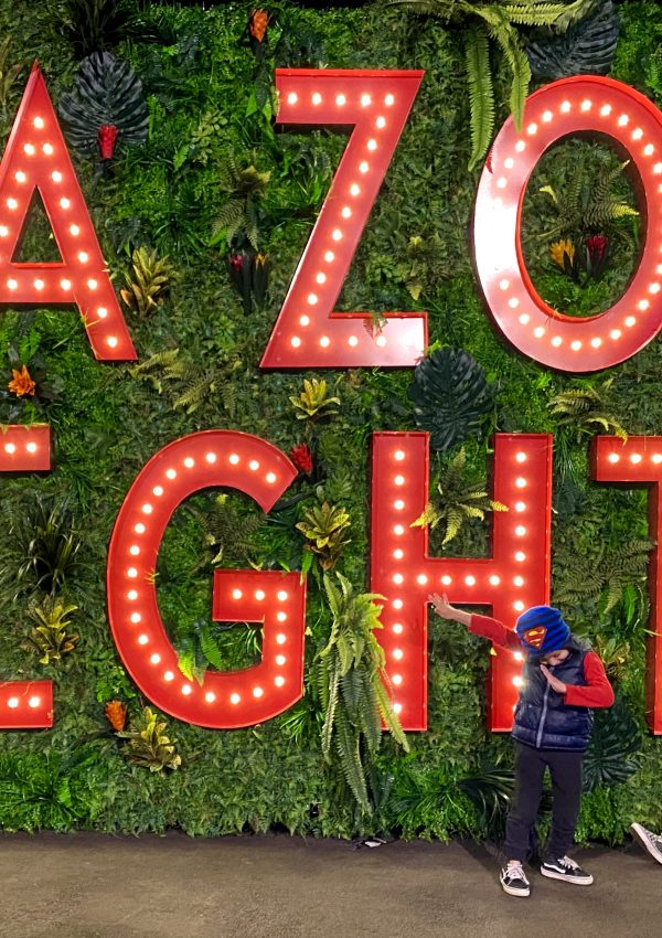 L.A. Zoo Lights 2019 GIVEAWAY