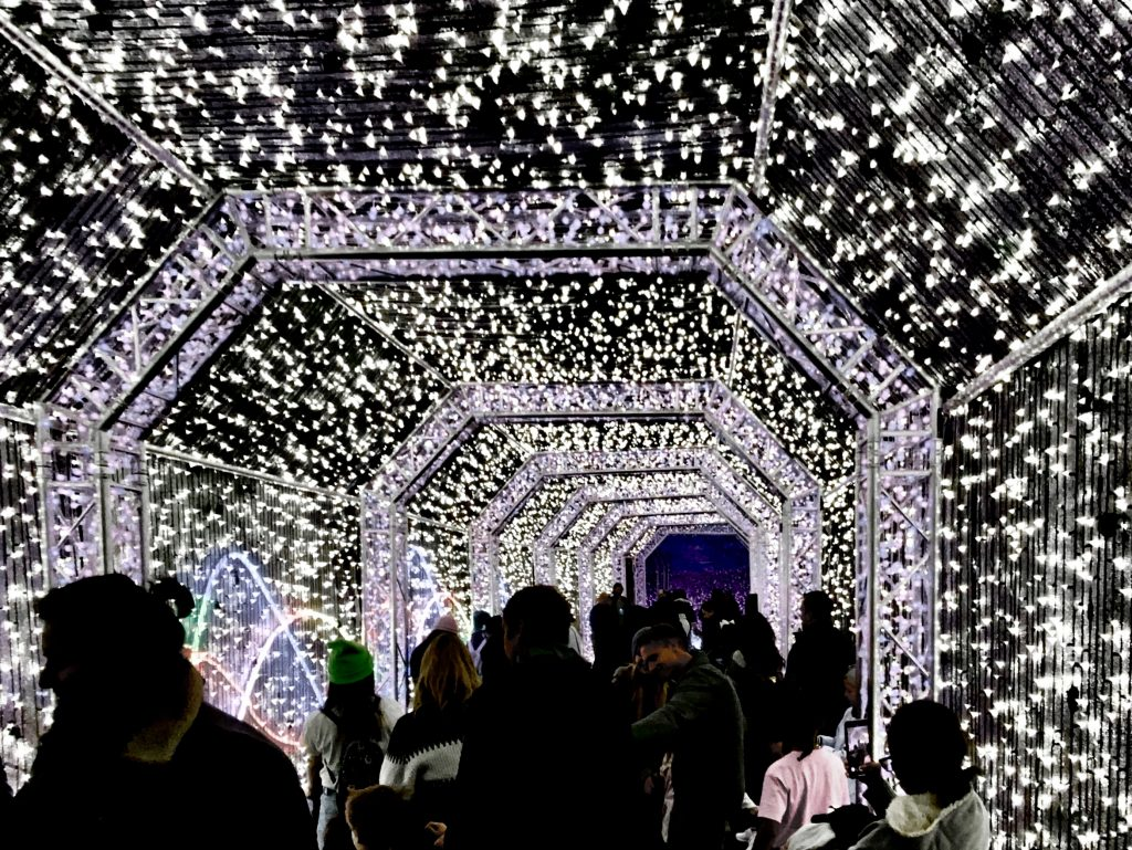 Twinkle Tunnel at the LA Zoo Lights