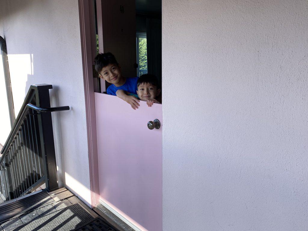 Hofsas House Dutch Door