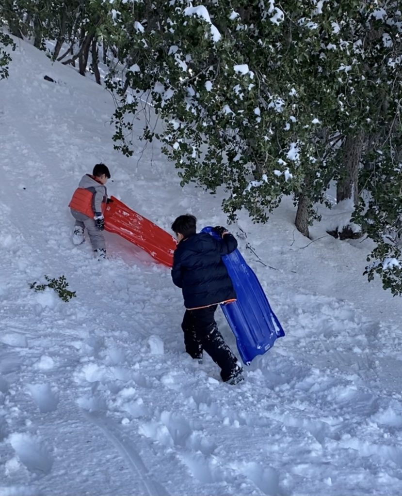 Sledding in Wrightwood