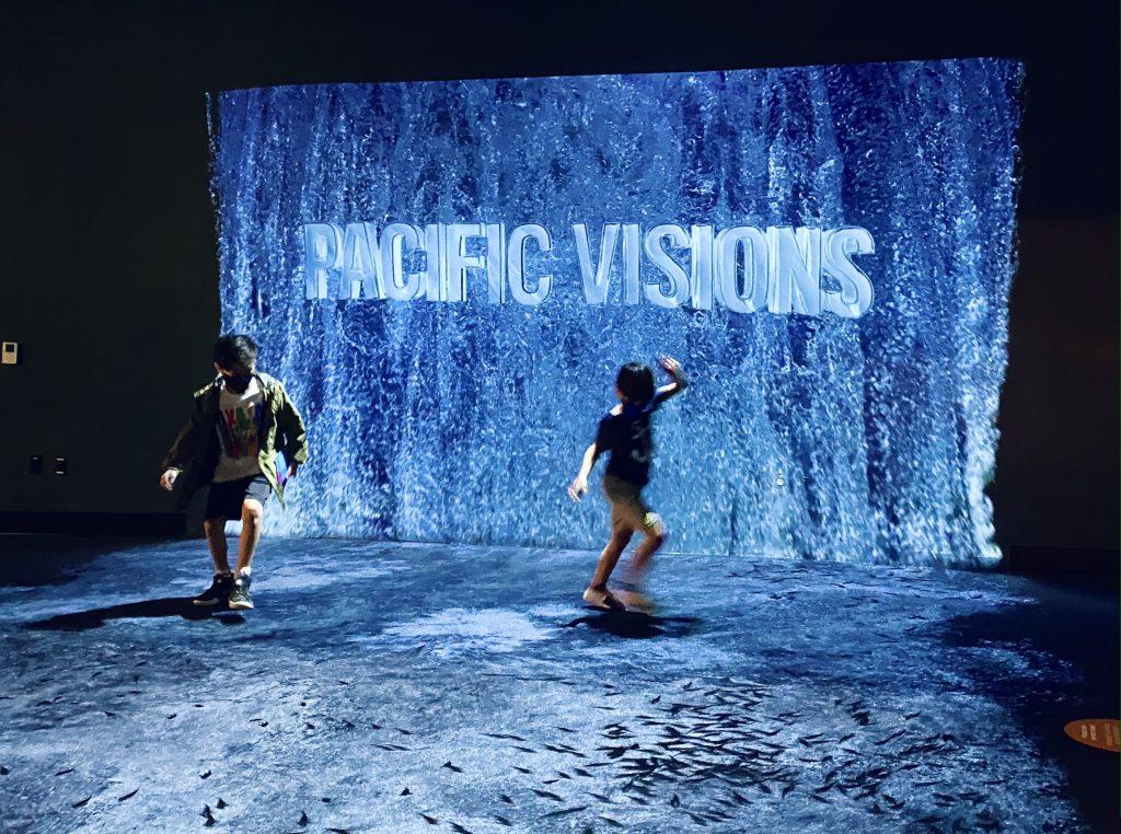 Pacific Visions at Aquarium of the Pacific